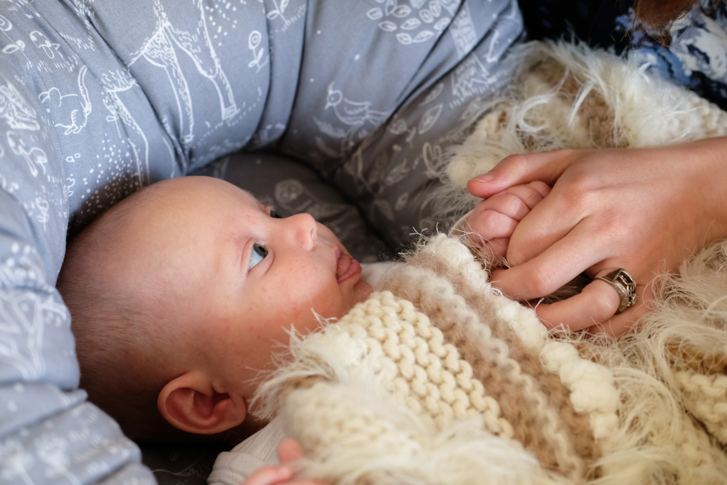 Safe Co-Sleeping with Nordic Nuss