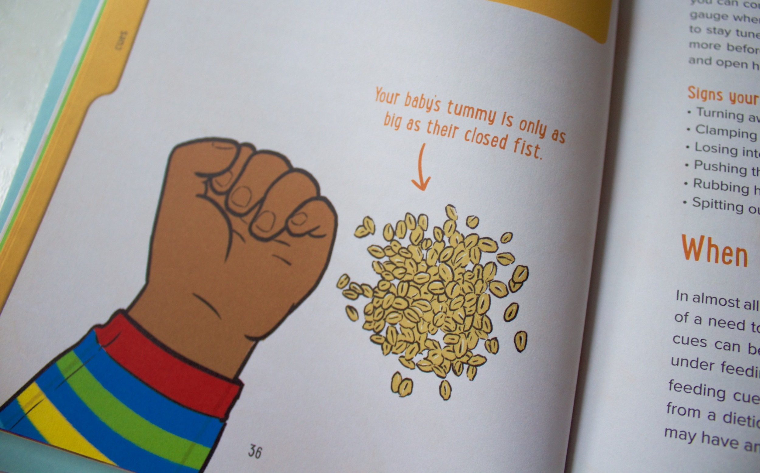 Weaning Sense, Weaning Sense : Making food FUN for everyone!