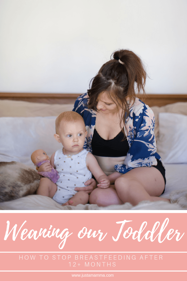 Weaning-our-toddler