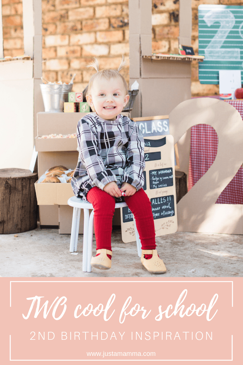 Two Cool For School 2nd Birthday Inspiration 2
