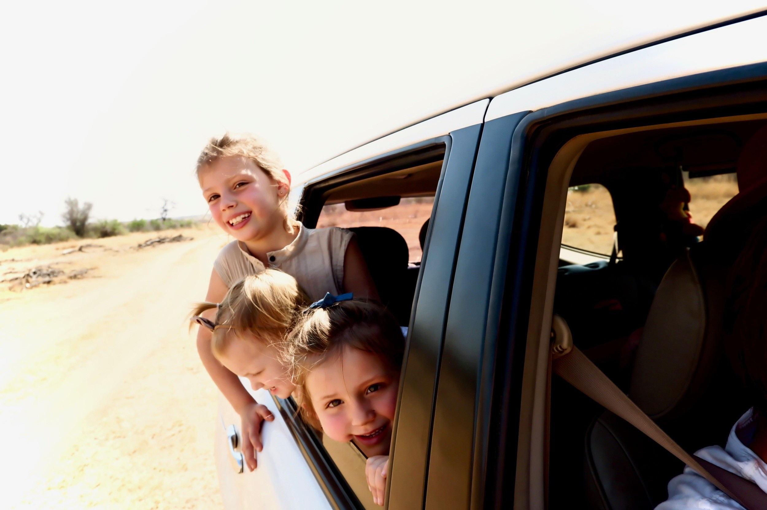 Self Drive At Dinokeng Game Reserve