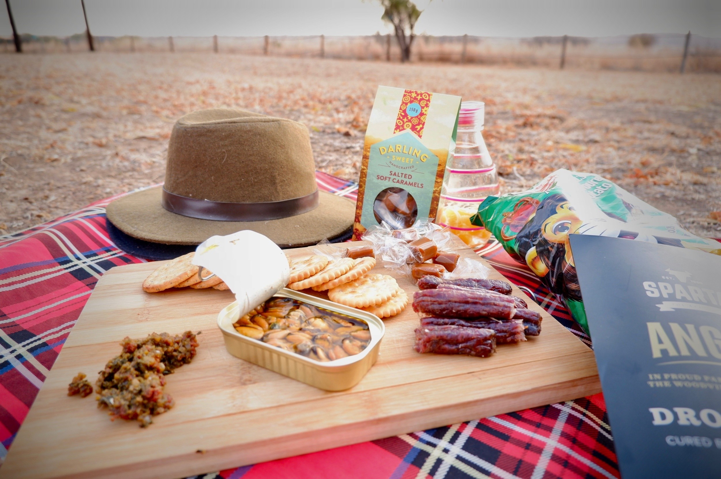 The Perfect South African Picnic