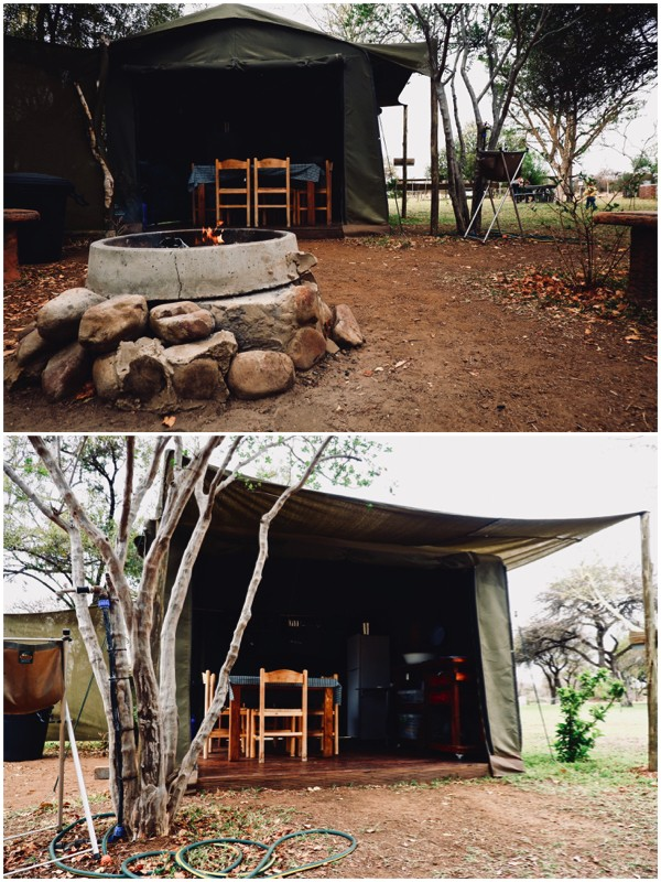 Thorn Tree Bush Camp Tented Camp Site