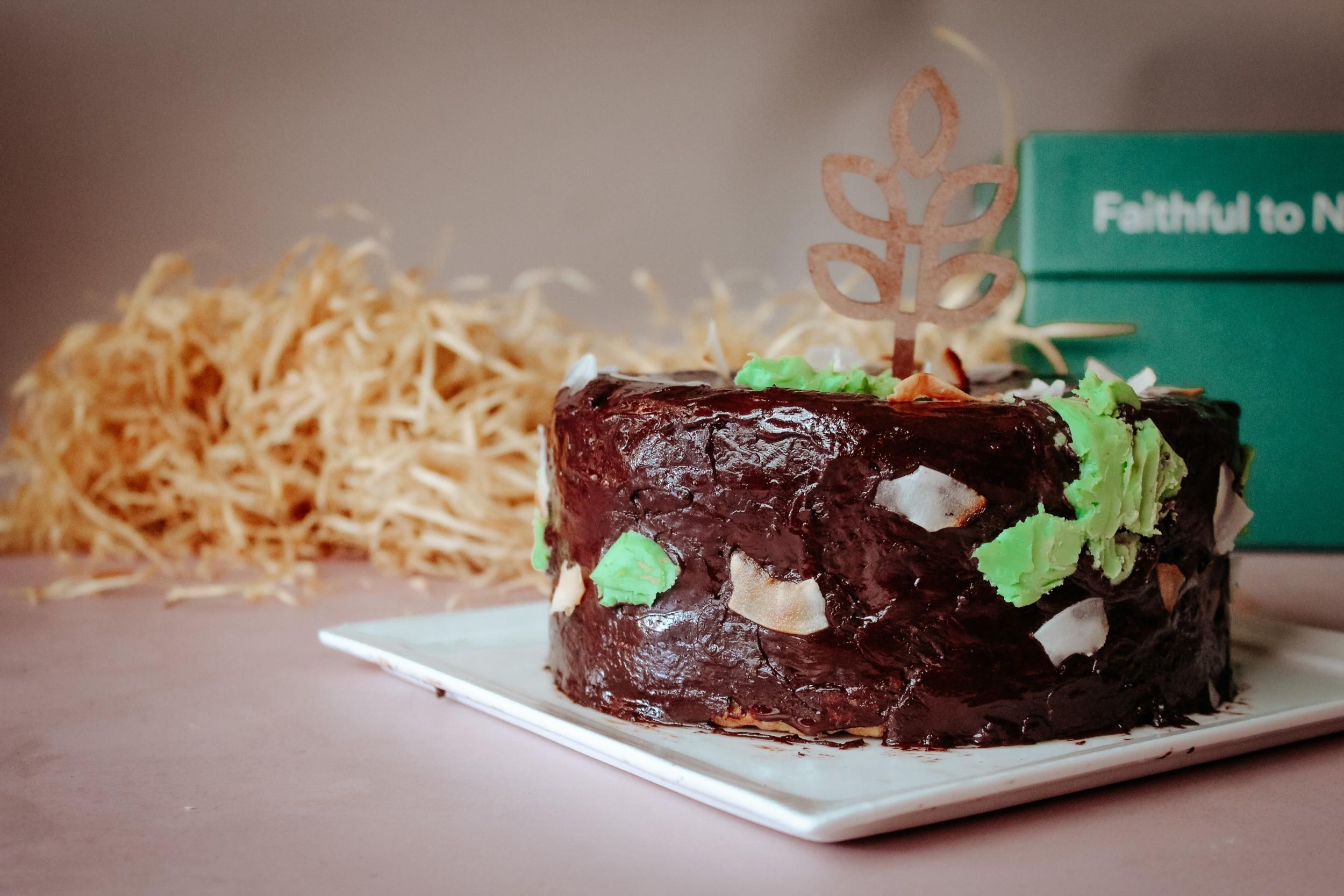 Vegan Coconut Cake Recipe 0597