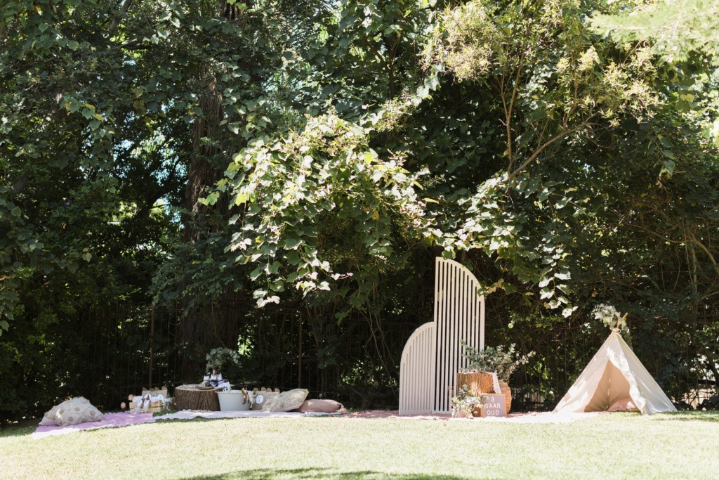 setting up a backyard picnic party