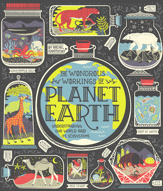 the wondrous workings of planet earth understanding our world and its ecosystems just a mamma